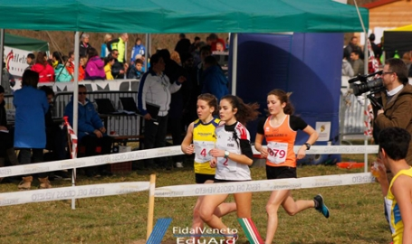 Come corre il Veneto, a Nove le finali regionali di cross. Folla di runner, ricordando Seba: campioni Zanatta e Dalla Montà